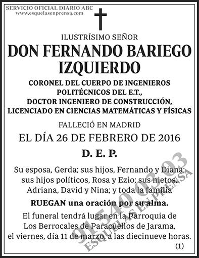 Fernando Bariego Izquierdo
